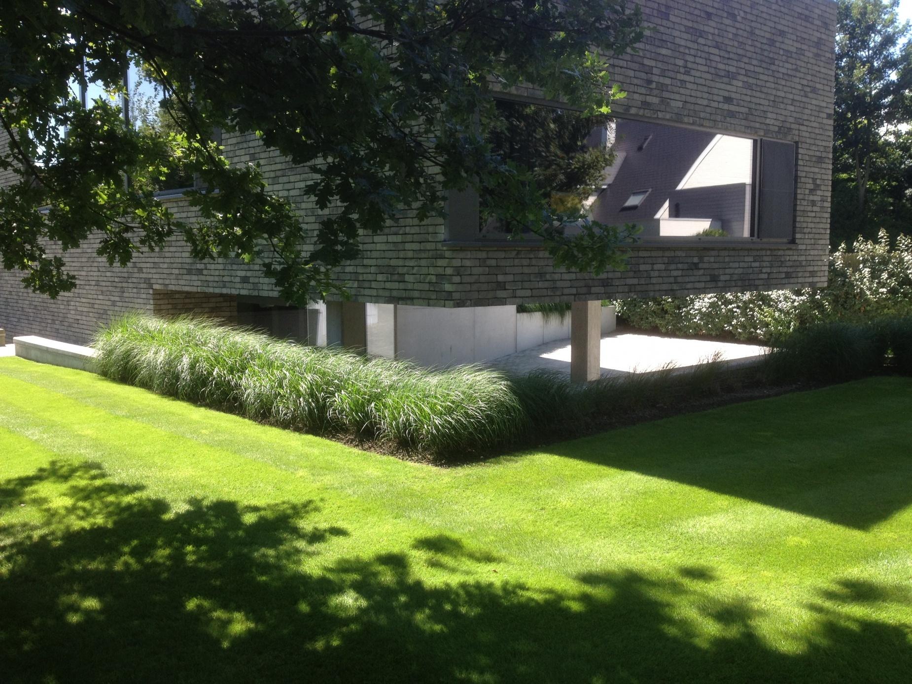 Strakke tuinen met siergrassen op48 belbin info for Strakke tuinen met siergrassen