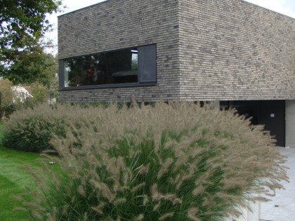 Moderne zuiderse tuin met strak karakter