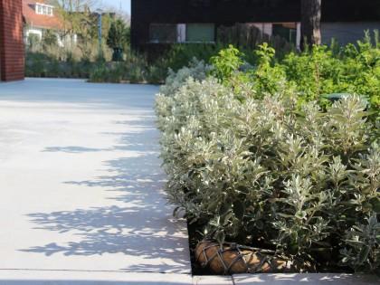 Strake en pure tuin